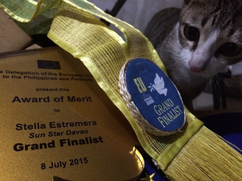 That's my kitten Patience as I was unboxing my trophy.